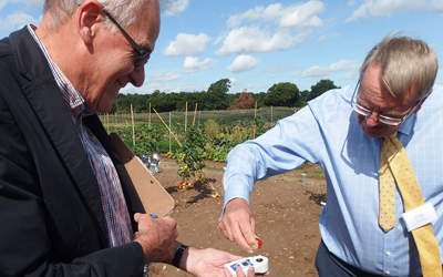 John Burrows and Paul Hansord - Brix Testing Tomatoes