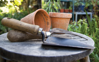 Garden tools for autumn and winter