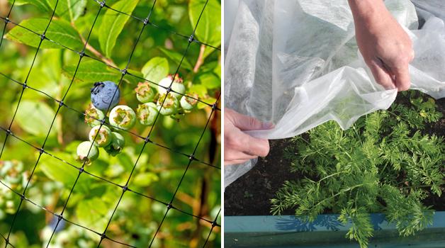 Netting & Horticultural fleece