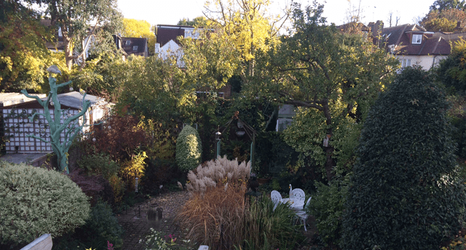 Now it truly is autumn in the garden