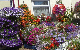 Welcome To The New Gardening Year 2017
