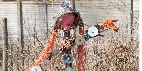 cd scarecrow