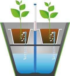 self watering pot diagram