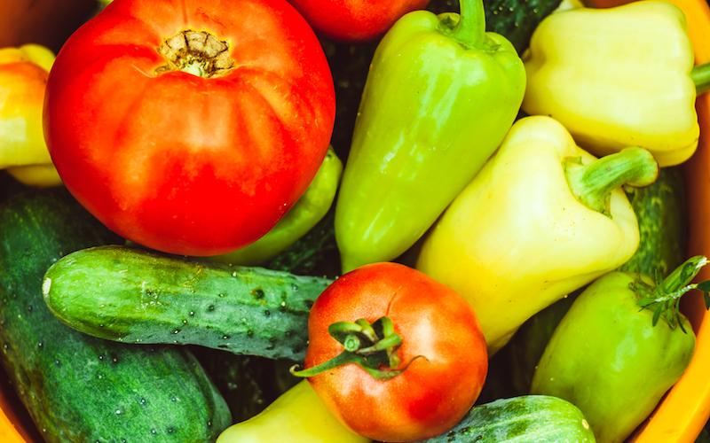 organic gardening vegetables