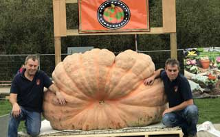 Pumpkin twins' giant beats their own record!