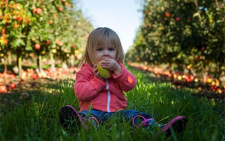 Safety Precautions for Kids in Your Garden
