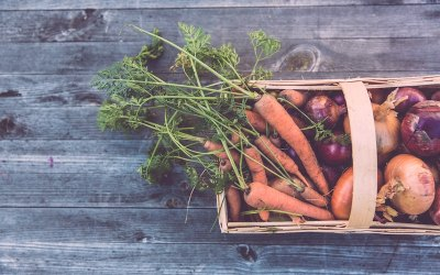 Grow your own meals – these 11 Instagrammers will show you how