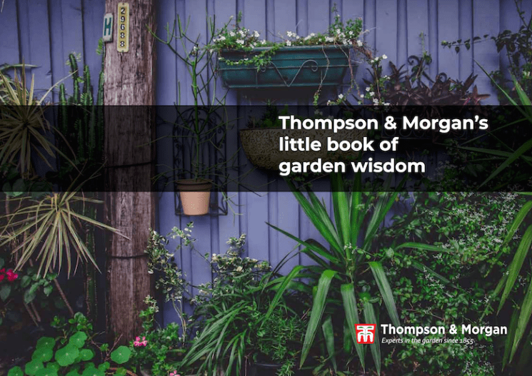 thompson & morgan's little bok of garden wisdom cover