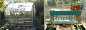 My New Greenhouse and Bench