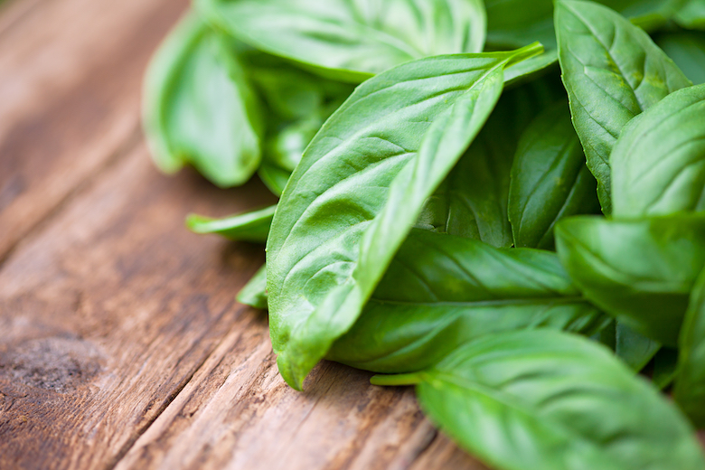 closeup of basil leaves against a wooden table