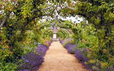 10 bloggers who review gorgeous gardens to visit