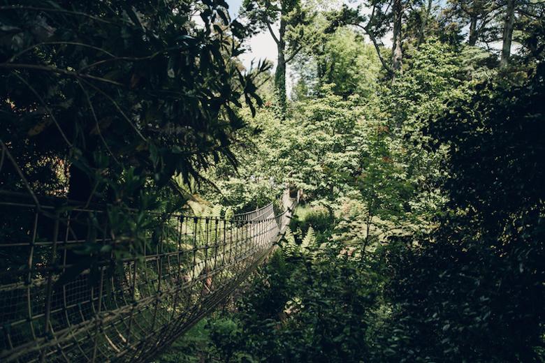 Lost Gardens of Heligan from Haarkon