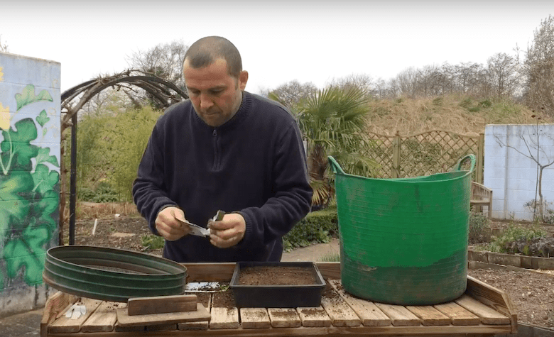 Head of Garden Organic sowing seeds