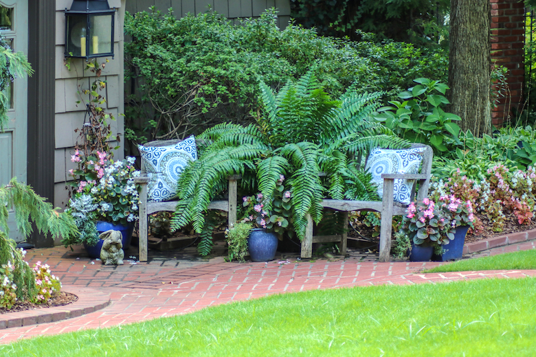 Garden with ferns, hostas and outdoor chairs