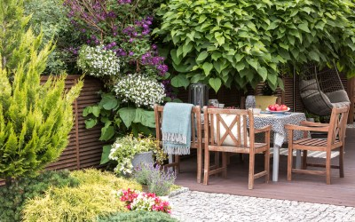 Small border planting ideas with high impact