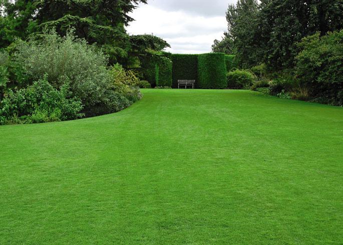 garden style 2020 lawn
