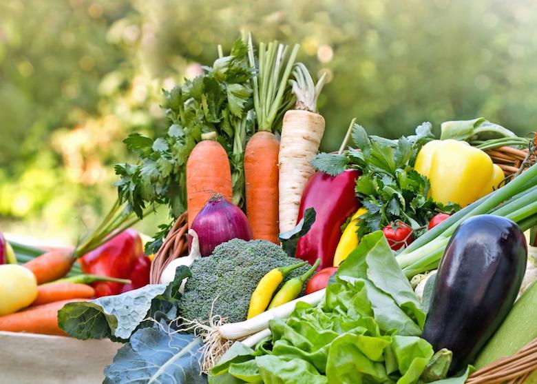 Basket full of fresh veg