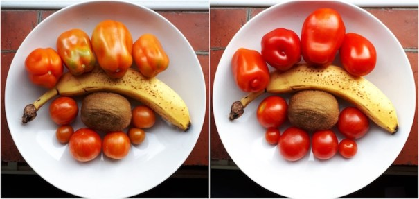 Two images of bananas ripening tomatoes
