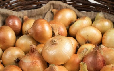 Grow your own onions and save money
