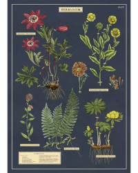 Herbarium wrap from Those Plant Ladies. Navy background with several flowers -- green leaves, red, orange, and yellow flowers.