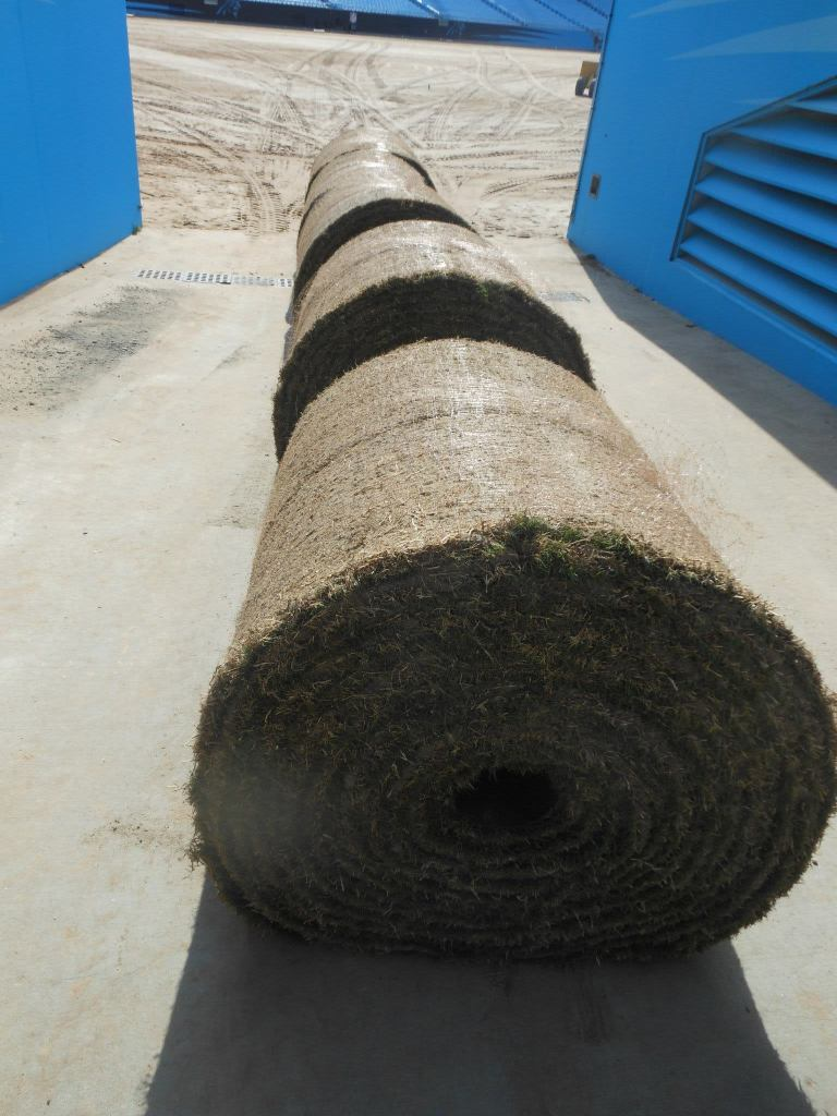 Rolls of turfgrass ready to be installed at the Carolina Panthers' Stadium.