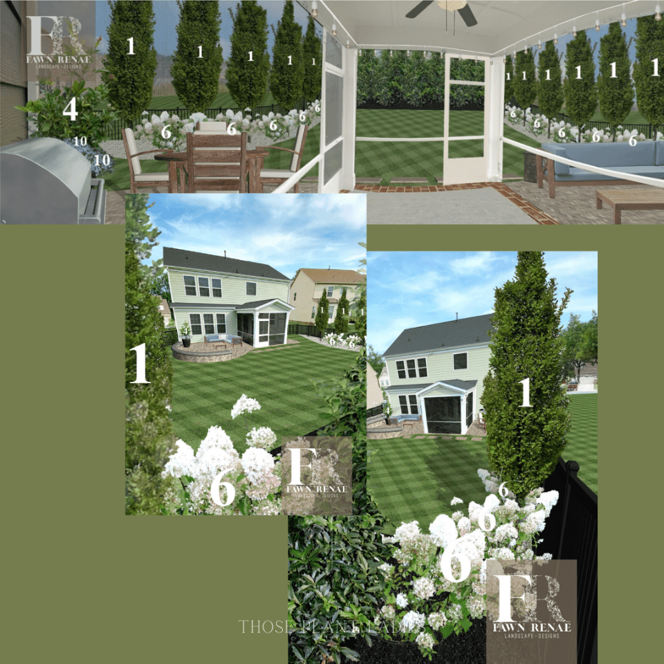 Compilation of design images including Musashino Zelkova trees from Fawn Renae Designs.