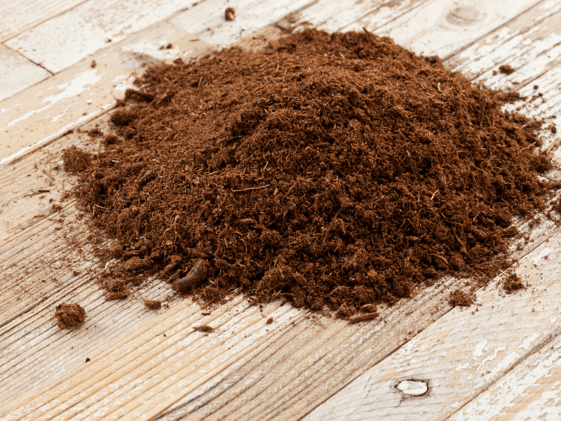 How to pick the right soil for your project by Those Plant Ladies; show here: peat moss