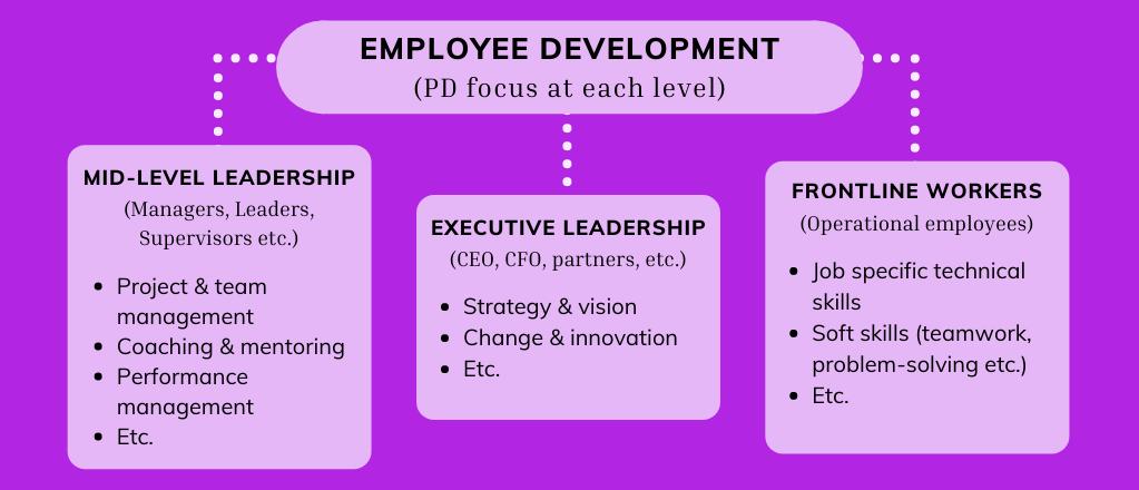 employee development grid focussing on professional development