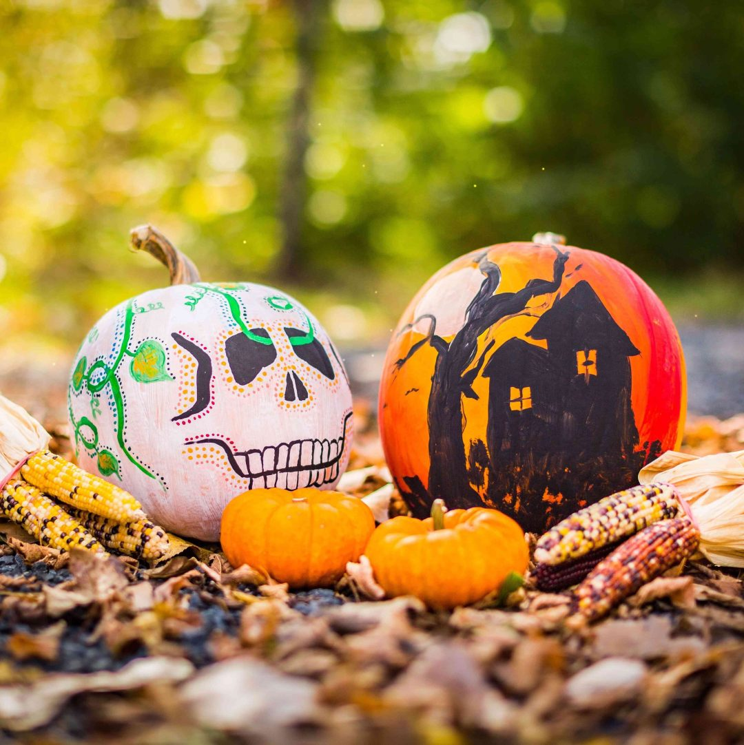 Two painted pumpkins