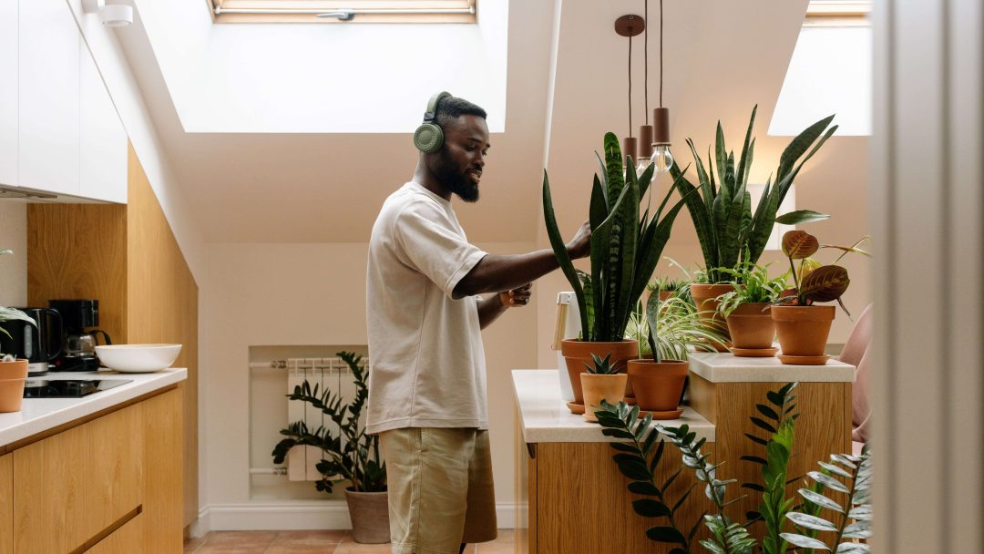 Person watering plants in the home kitchen