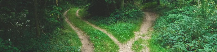 A fork in the road representing client indecision