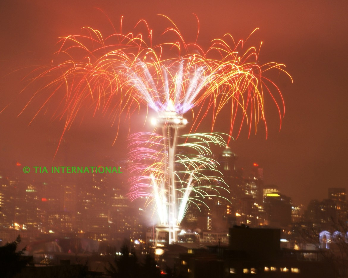 Seattle Welcomes the Year 2009