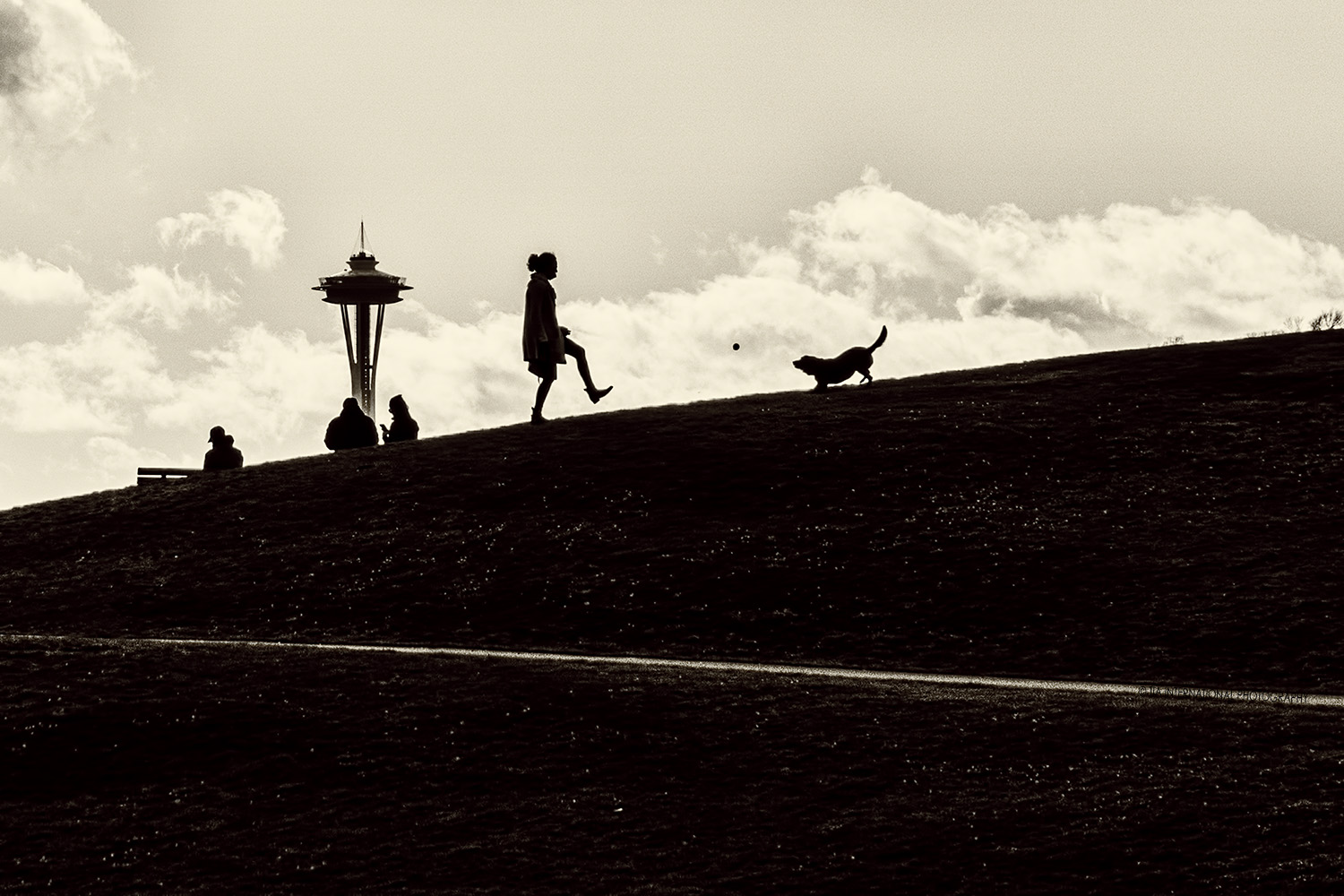 Silhouettes of people, a dog, and the Space Needle at Gas Works Park in Seattle. (December 22, 2020).