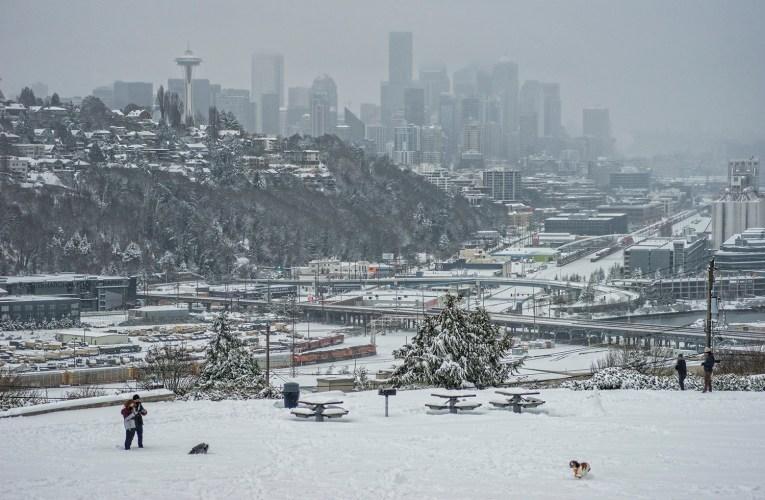 """Snowmageddon Chronicles"": Part One"