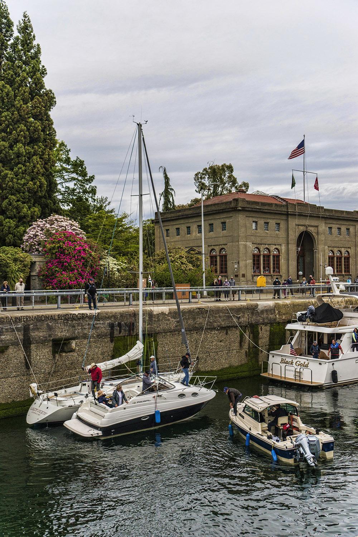 Ballard Locks, Seattle / May 8, 2021