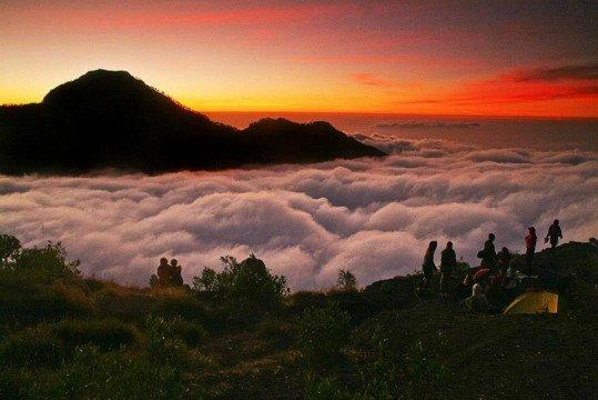 Sumber ; http://www.belantaraindonesia.in/