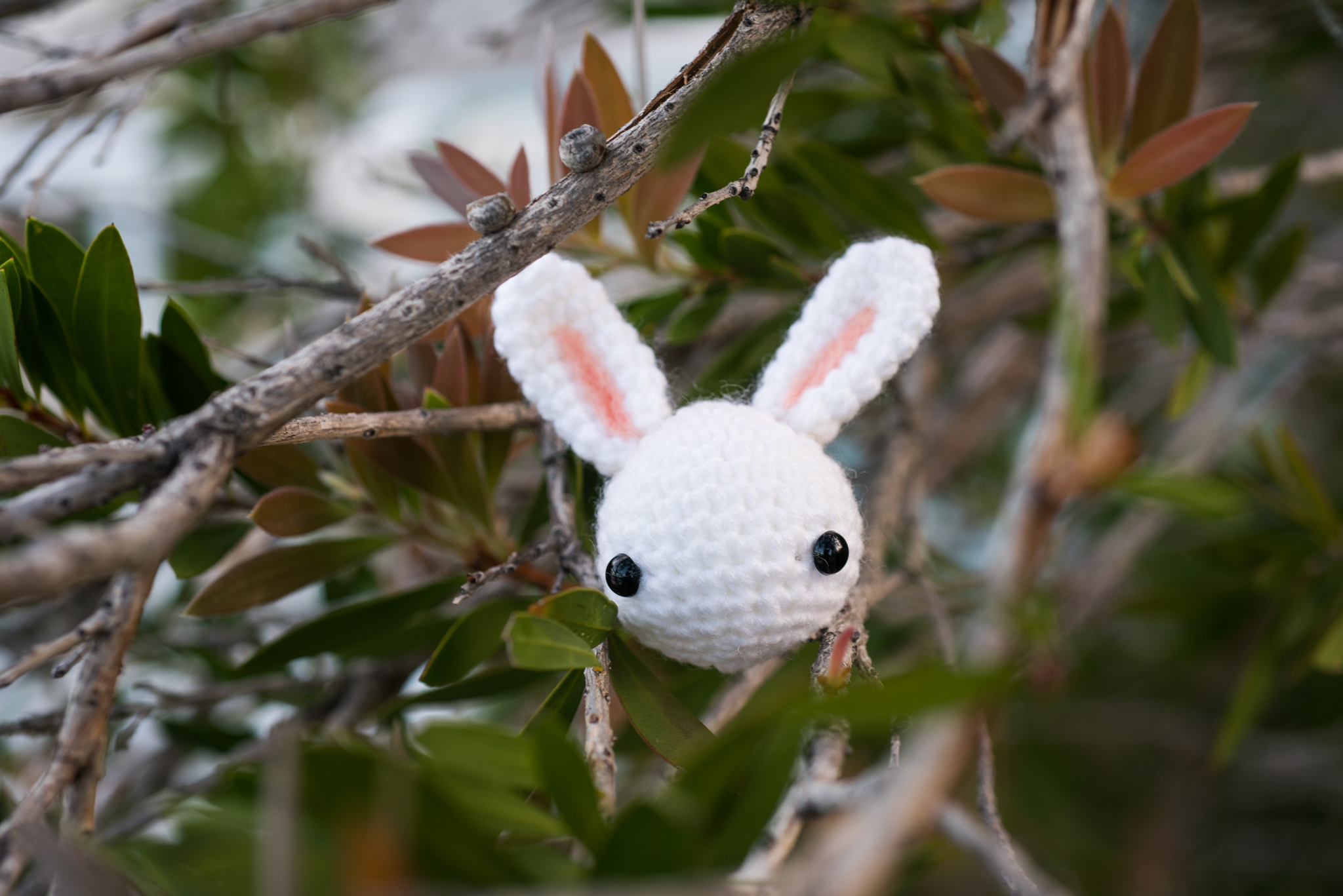 tiny rabbit hole - toki the bunny amigurumi white rabbit in the trees