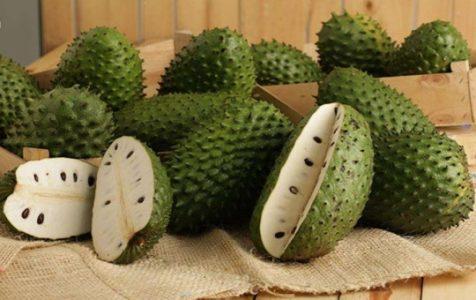Graviola: Το φρούτο της υγείας και μακροζωίας!