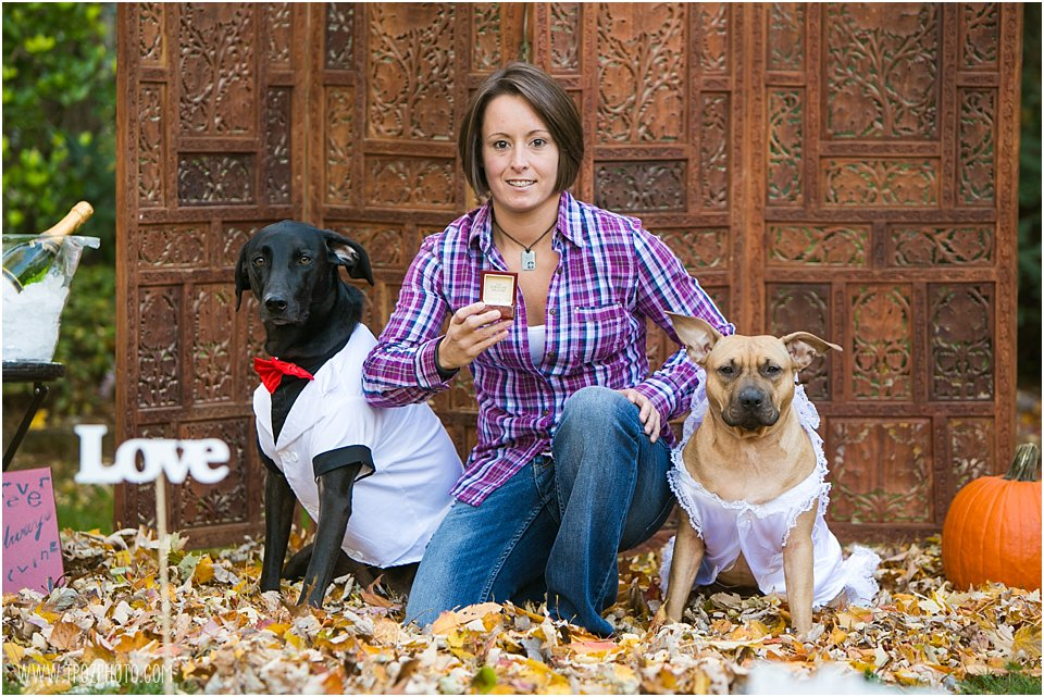 Doggies helping with same-sex engagement proposal