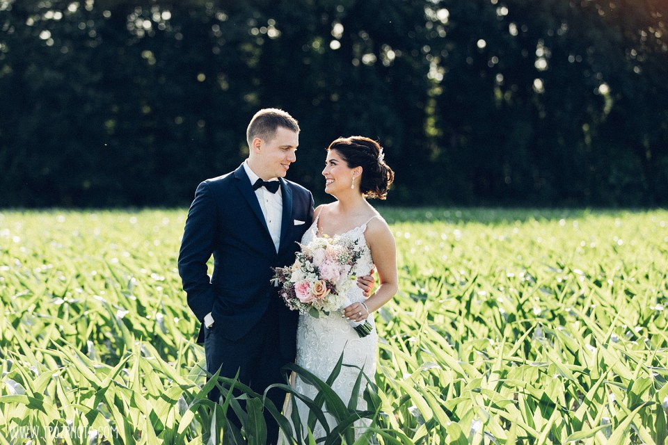 Bride and groom in the cornfields at a Rosewood Farms wedding