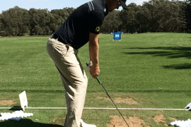 Model Swing: Bernd Wiesberger