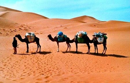 Chegaga-Sahara-Desert