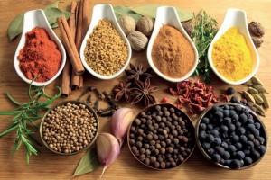 Fez Gourmet Best Riads