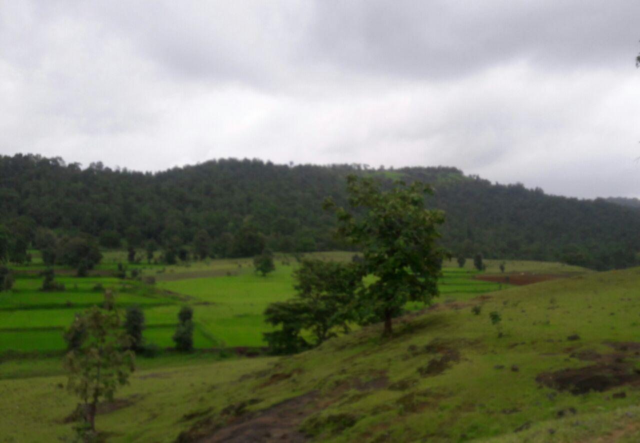 RouteRoad from Jabalpur to Kanha