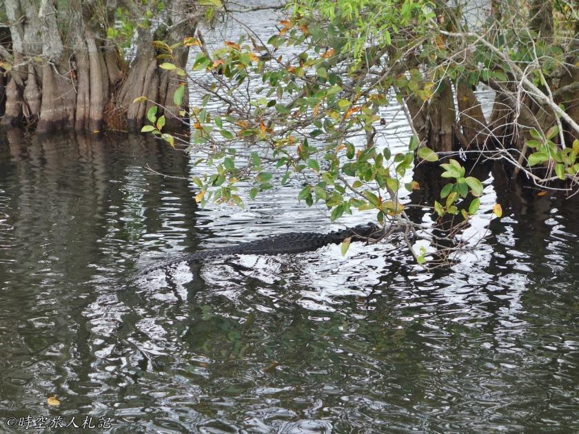 大沼澤地國家公園 5