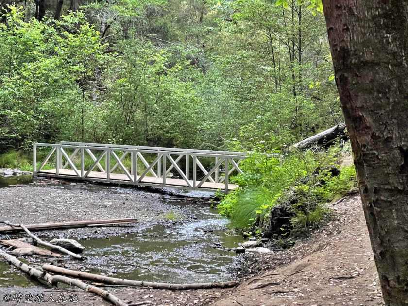 Portola redwood state park 19