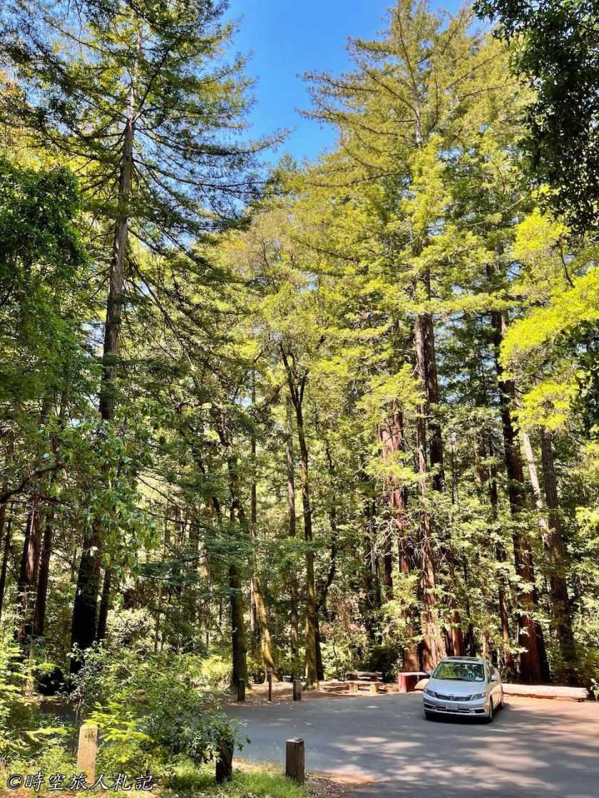 Portola redwood state park 10
