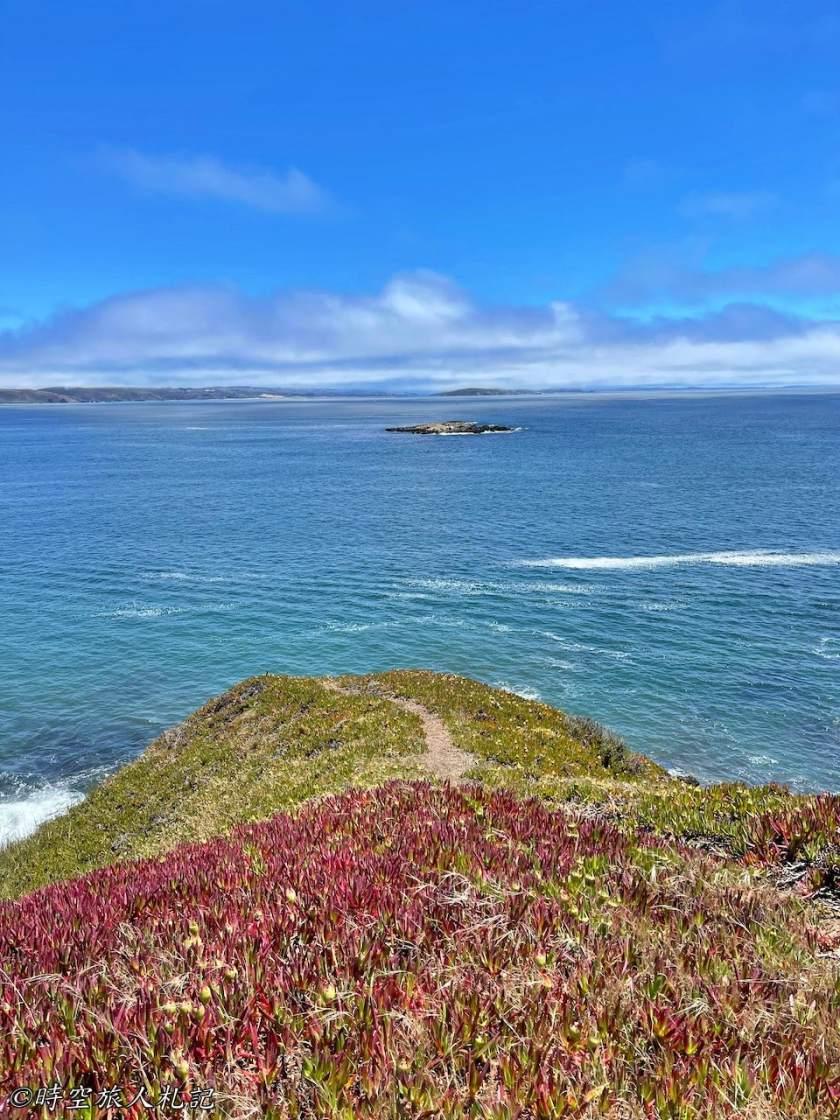 Bodega bay 7