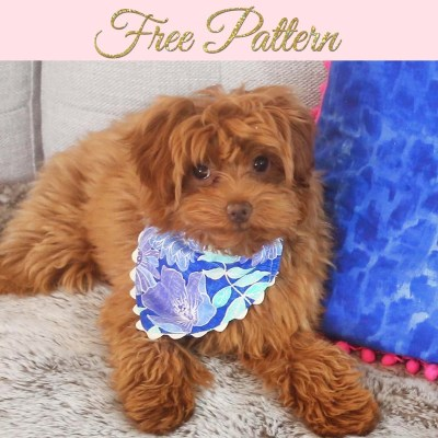 free dog bandana pattern