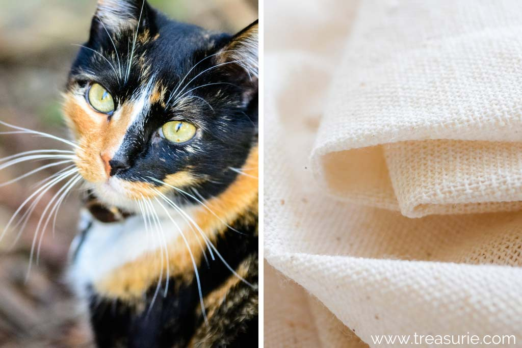What is Calico